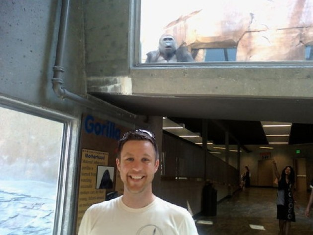 Gorilla Photobomb