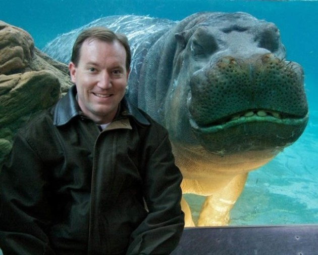 Hippo Photobomb
