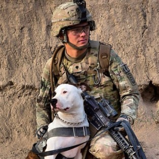 Dog and Soldier Photo