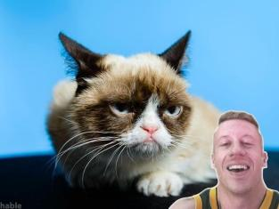 Macklemore and Grumpy Cat