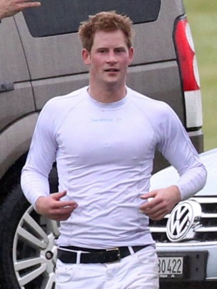 Hot Prince Harry Picture
