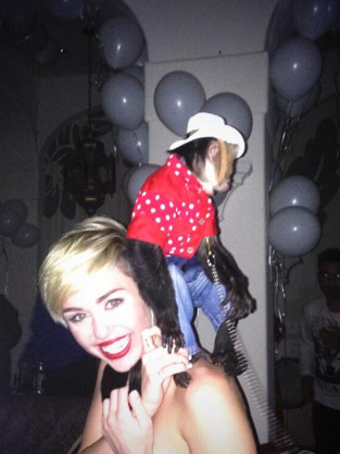 Miley Cyrus and a Monkey