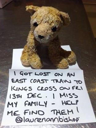 Lost Lion Found