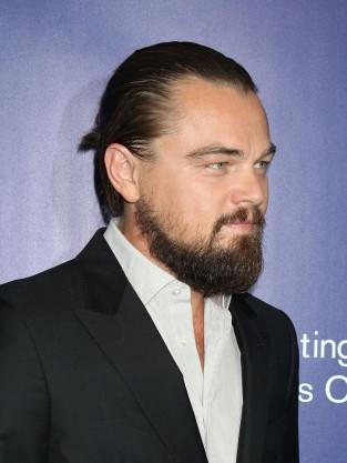 Leonardo DiCaprio Red Carpet Photo