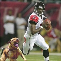 Michael Vick Book Cover