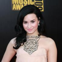 Who looked better at the American Music Awards: Demi or Selena?