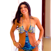 Teresa Giudice Bikini Photo