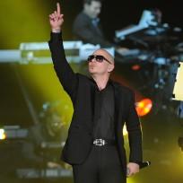 Pitbull-picture