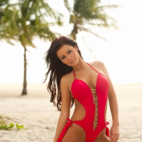 JWoww Swimsuit Photo