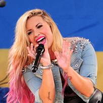 Demi Lovato Concert Pic