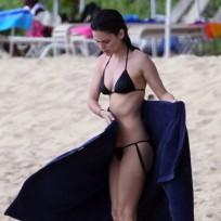 Rachel bilson bikini picture