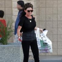 Sarah Palin Thinner