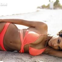 Beyonce Bikini Picture