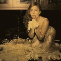 Lady Gaga, Cake Photo