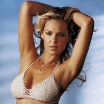 Katherine heigl bikini pic