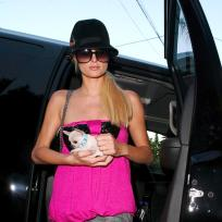 Paris Hilton Shopping Dog