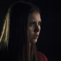 Nina Dobrev as Elena