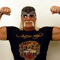 Hulk Hogan and His Muscles
