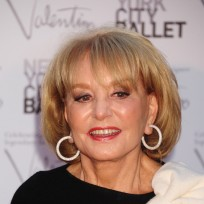 Barbara walters red carpet pic