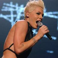 Pink Performs Photo