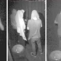 Lohan robbers