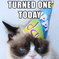 Grumpy-cat-birthday