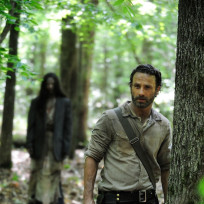 The-walking-dead-season-4-pic