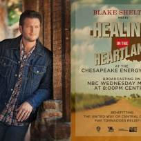 Healing in the heartland relief benefit concert poster