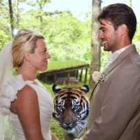 Tiger Photobombs Wedding