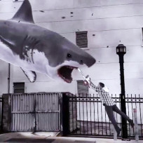 Sharknado-photo