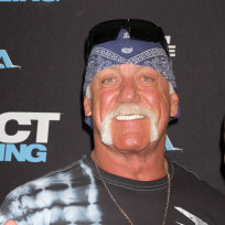 Would you watch a Hulk Hogan biopic?