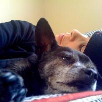 Sarah-silverman-dog