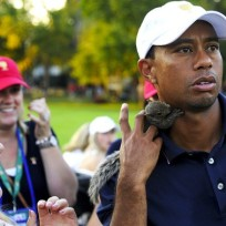 Lindsey vonn squirrel tiger woods