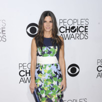 Sandra-bullock-at-the-pcas