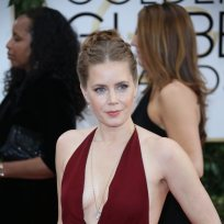 Amy-adams-at-2014-golden-globes
