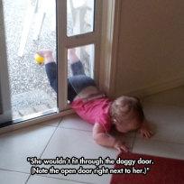 Pet Door Fail