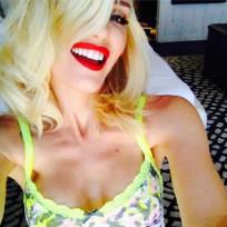 Gwen Stefani Lingerie Selfie