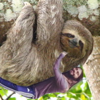 Jared Leto Hugs a Sloth