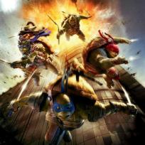 Ninja turtles 9 slash 11 poster