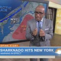 Al-roker-in-sharknado-2