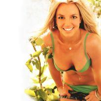 Britney-spears-bikini-wallpaper