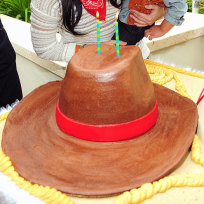 Celebrity kids birthday cakes cowboy up