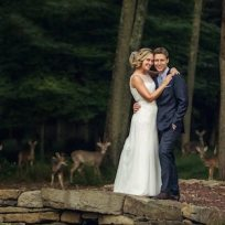 Deer photobomb wedding picture