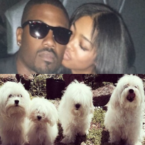 Ray j princess love dogs