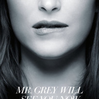 New 50 shades of grey poster