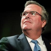 Jeb bush photo