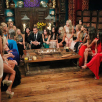 Chris soules on the bachelor premiere