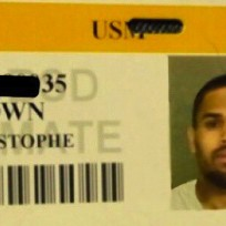 Chris brown id