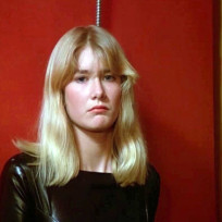 Laura dern ladies and gentlemen the fabulous stains