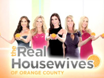 Real Housewives of Orange County Season 9 Cast Pic